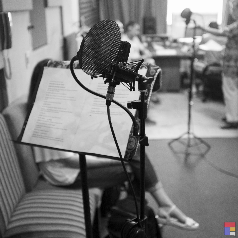 Producción sonora a pedido: audiolibros, podcast, etc